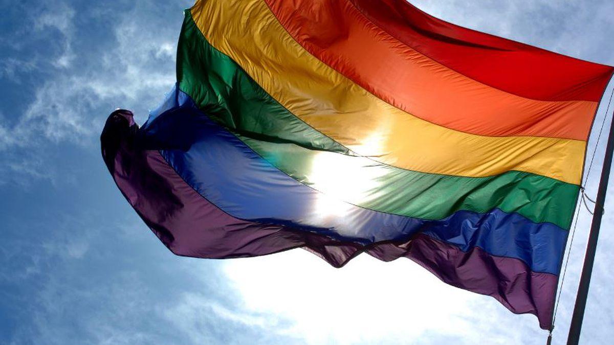 Pride flag (Image: Wikimedia Commons)