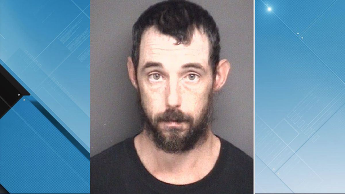 This Greenville man was sentenced to two years and four months in federal prison.