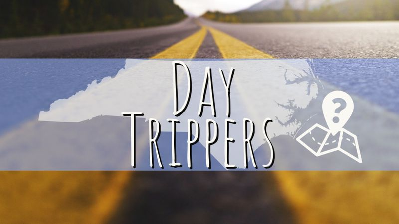 """""""Day Trippers"""""""