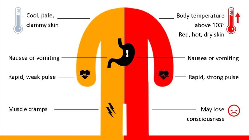 It is important to know the signs of heat related illnesses and what to do in the event that a...