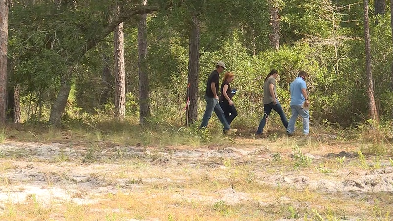 Officials investigate the fatal Onslow County plane crash