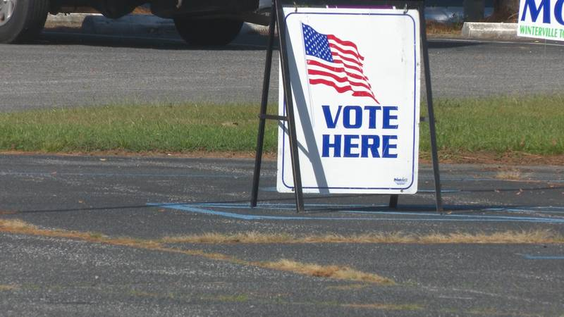 Early voting in Pitt County