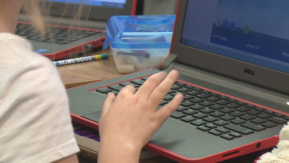 The online learning system across the state has reportedly crashed as students try to login for...