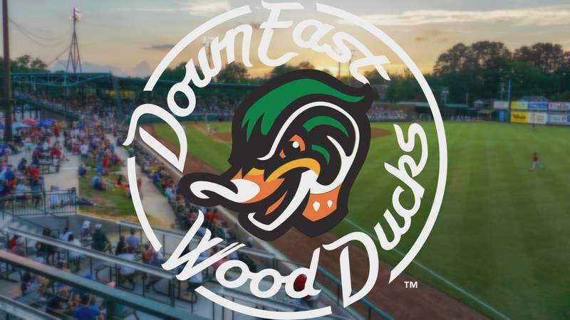 Down East Wood Ducks Generic