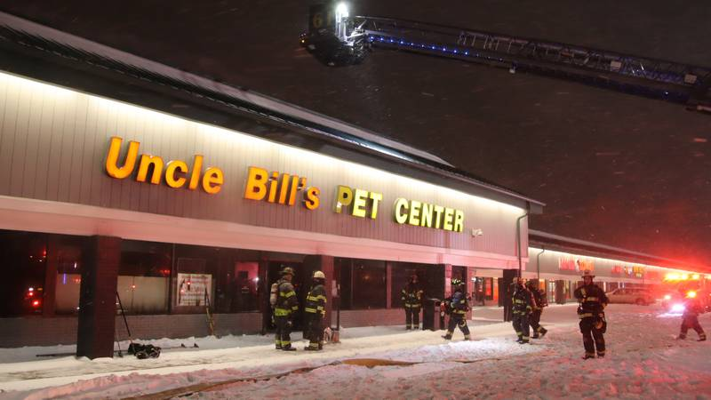 A fire at an Indiana pet store took the lives of 100 animals.