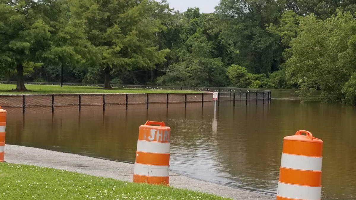 The Tar River flooding over the sidewalk at Greenville Town Common