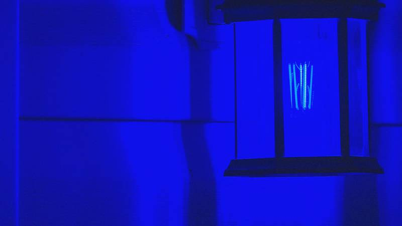 Neighborhood residents change porch lights to blue in support of law enforcement