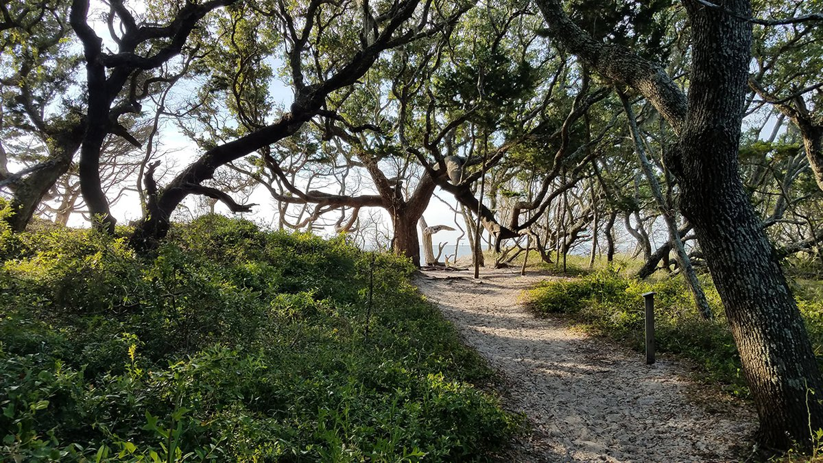 The Coastal Land Trust made the final purchase for the Springer's Point Preserve.
