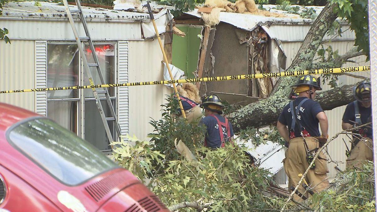 Chapel Hill Fatal tree fall
