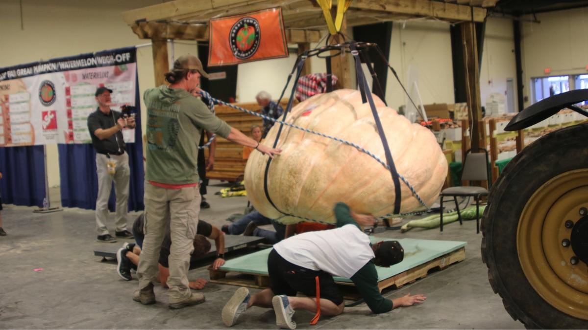 N.C. State Fair officials weigh Chris Rodebaugh's pumpkin